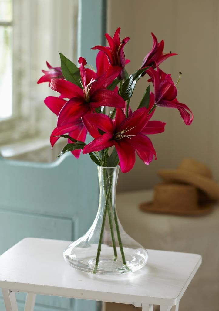 Casablanca Lilies Celebration Love Language Of Flowers Lily Meaning