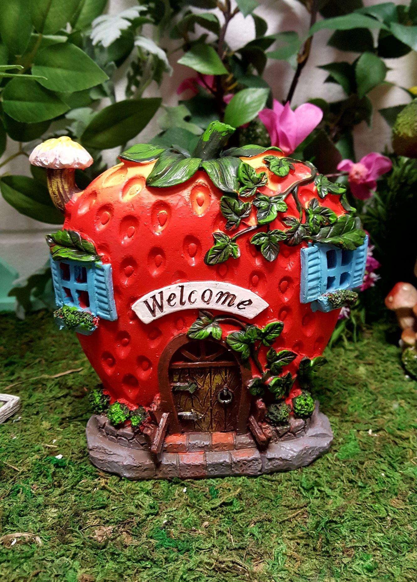 Strawberry House Led Fairy Gardens Uk Indoor Plants Indoor Orchid Care Indoor Orchids
