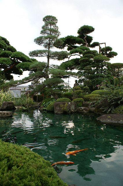 niwaki The great outdoors Pinterest Estanques, Jardines y Cascadas - Cascadas En Jardines
