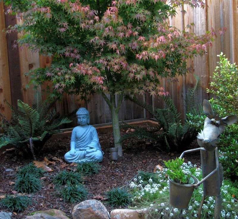 Décoration Jardin Japonais Statuette Zen Buddha érable Japon