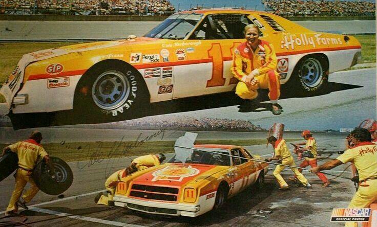 Cale Yarborough 1977 Nascar Champion Nascar Race Cars Nascar Cars Stock Car