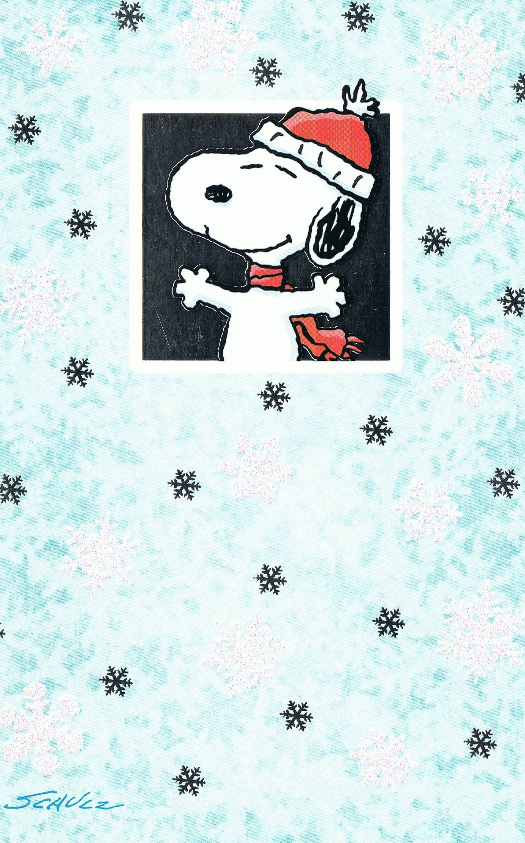 SNOWFLAKES, SNOWFLAKES...NEVER TWO ALIKE!