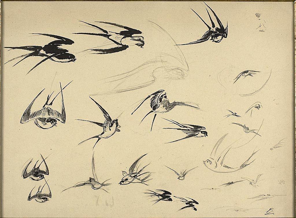 Félix Henri Bracquemond French, 1833-1914 / The Swallows, c. 1881