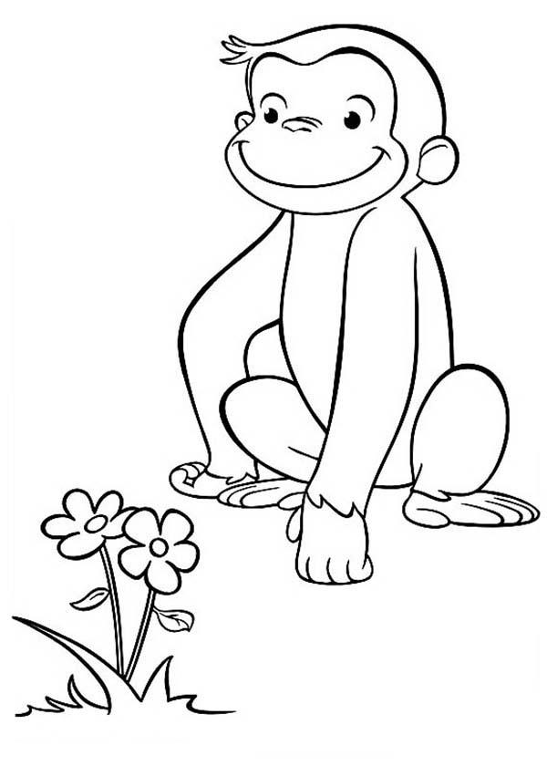 Curious George Found A Beuatiful Flower Coloring Page Netart Curious George Coloring Pages Flower Coloring Pages Coloring Pages