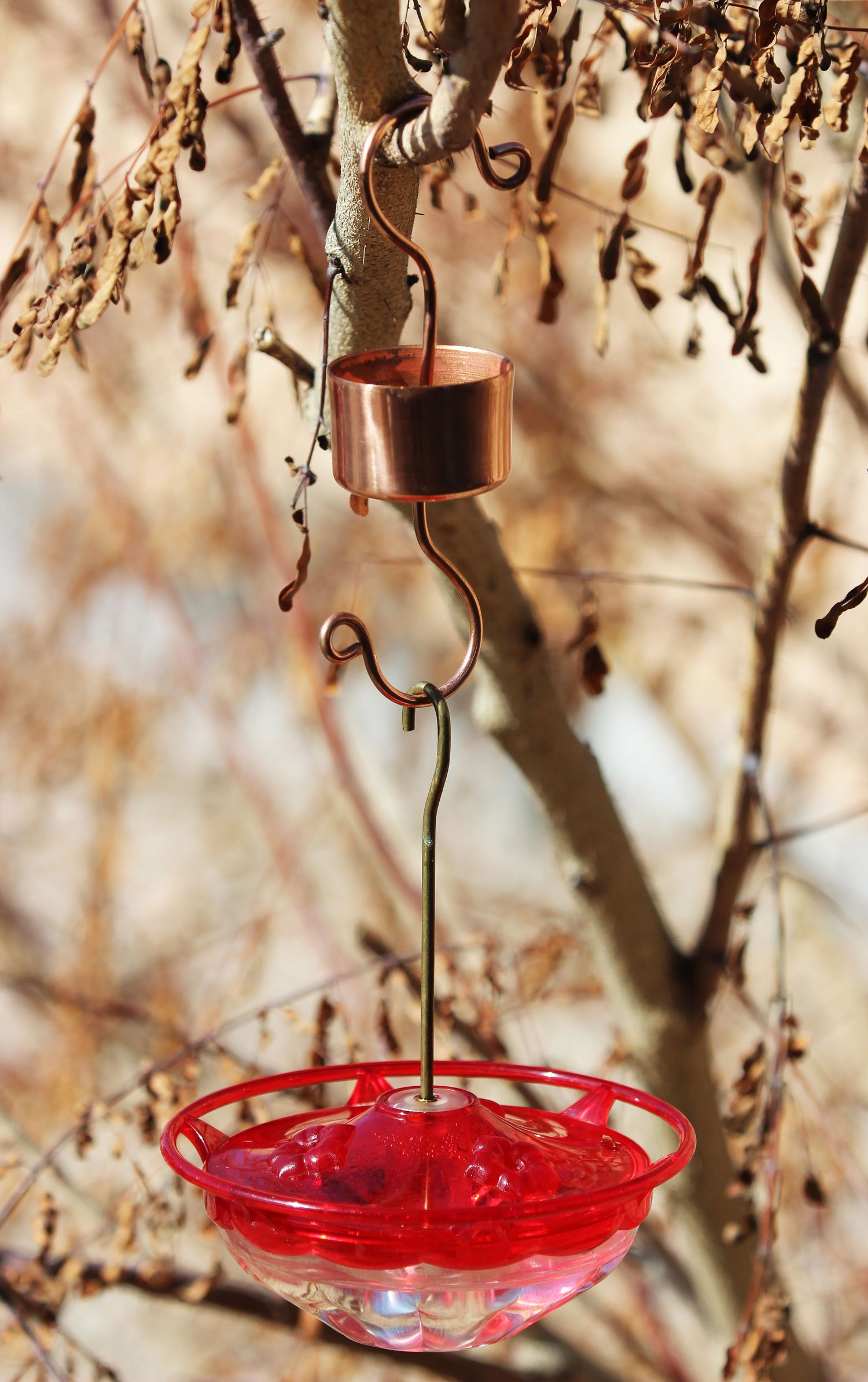 Ant Moat For Hummingbird Feeder Hairspray Cap Two Cup Hooks A Cork Put It Together Dab With Glue Humming Bird Feeders Bird House Feeder Bird House Kits