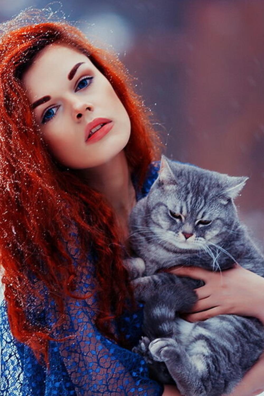 5 Tips For Raising A Friendly Cat in 2020 Cats, Feline