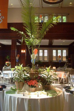 Tropical Christmas Party Ideas.Tropical Theme Party Decorations Office Decorated In A Winter