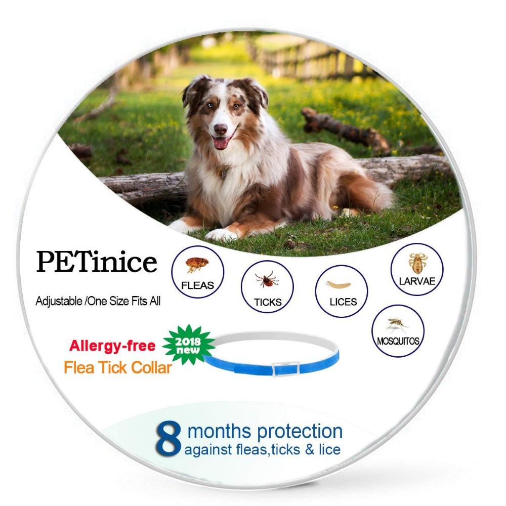 Seresto Flea And Tick Dog Collar And Its Alternatives