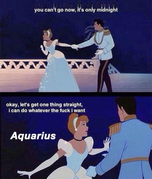 32 Funny Aquarius Memes That Are Basically Aquaria