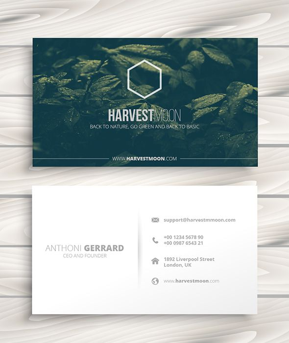 Harvest Business Card Presentation Cards Activities Cards
