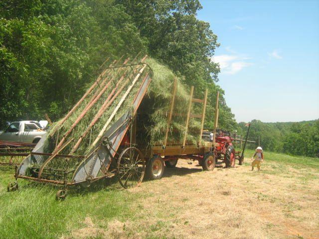 loose hay loader - Google Search | Old farm equipment, Farm equipment, Farm  machinery