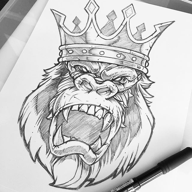 Tattoo Line Drawing Books : Finished rough for client review pencil gorilla sketch