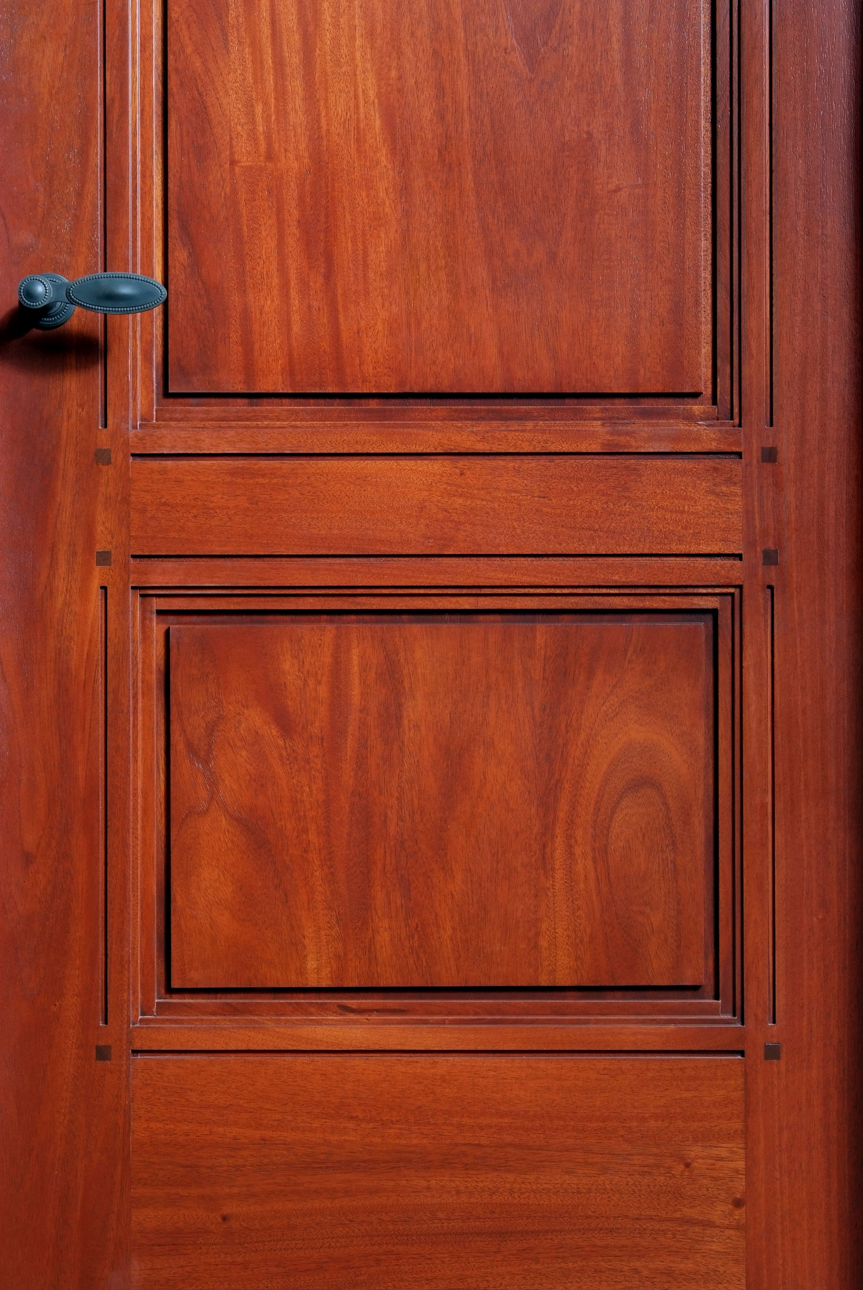 Custom Mahogany Wood Paneled Interior Door Interior