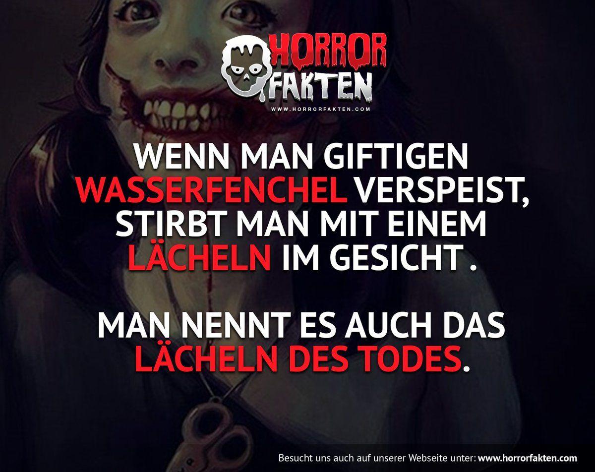 Horror Fakten (@HorrorFaktenOf) | Twitter | Creepy. | Pinterest ...