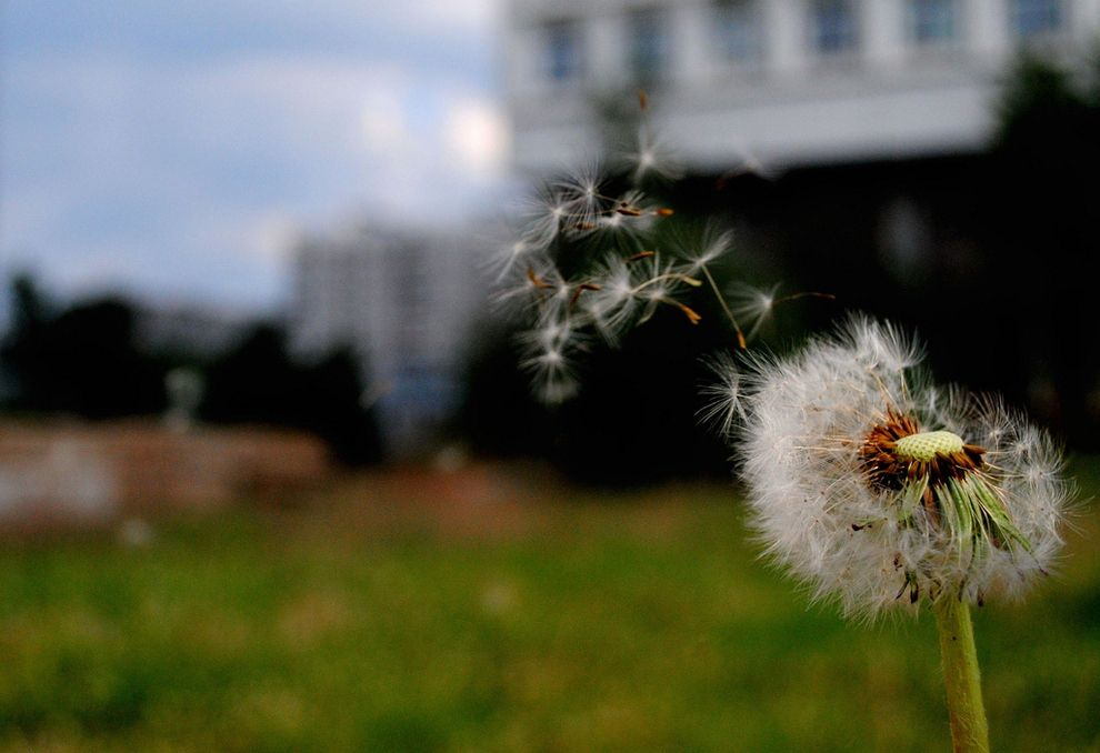 That first spring breeze. | The 21 Best Little Things In Life
