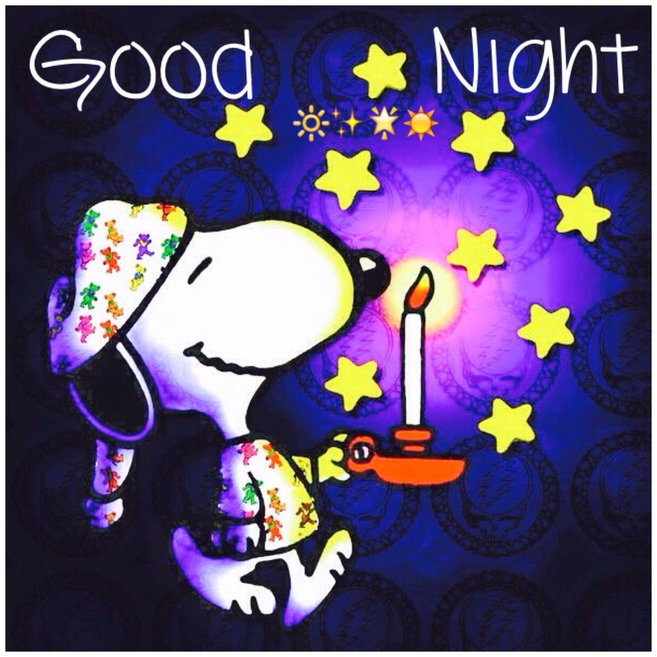 Goodnight Snoopy, Snoopy Funny, Snoopy