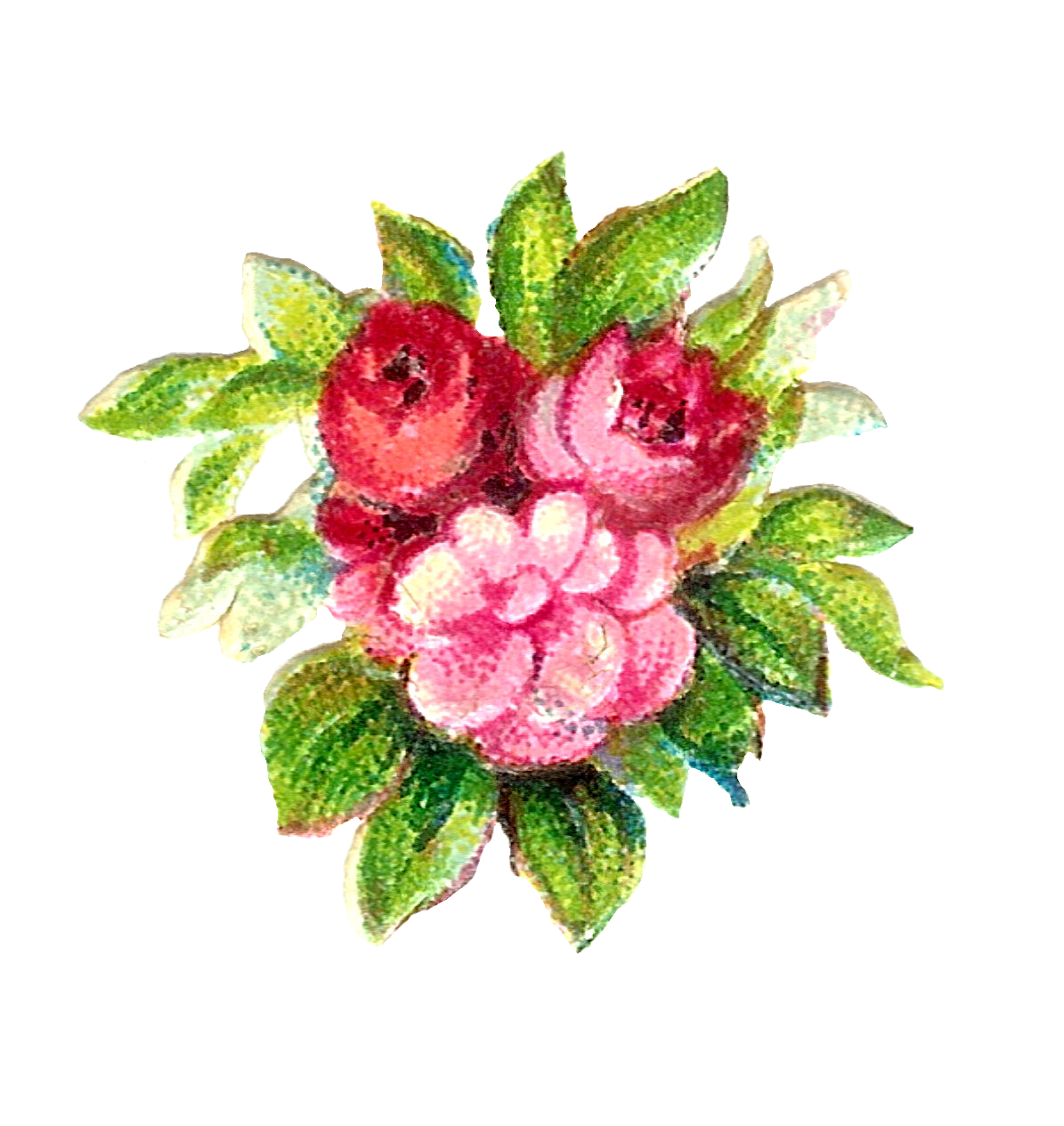 rose flowers digital design - photo #24