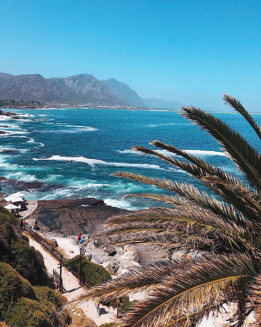 travel south africa Durban is part of Durban Travel Kwazulu Natal South Africa Lonely Planet - P a r a d i s e 🌴 Hermanus, South Africa 🇿🇦 KareninaEnSudáfrica  trip wanderlust travel southafrica paradise view beach roadtrip westerncape gardenroute hermanus