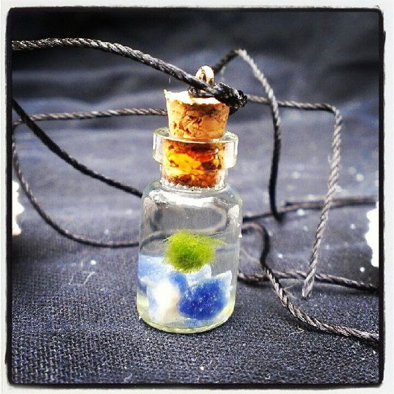 Japanese Living Baby Pet Marimo necklace terrarium in
