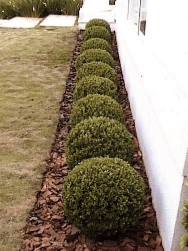 Photo of 47 Flower beds in front of house ideas- 2020 – Page 15 of 46 – miagiulia. com