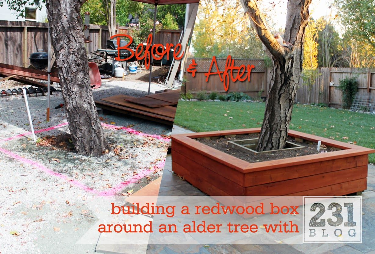 Before And After Diy Redwood Planter Box Around An Alder