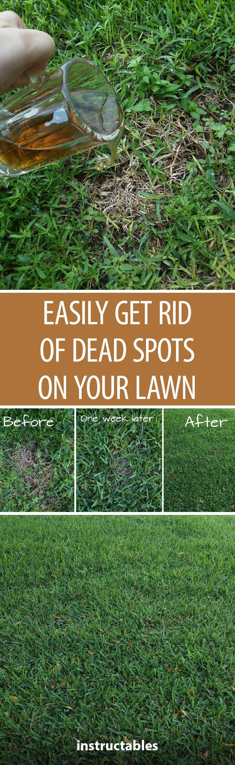 Easily Getting Rid of Dead Spots on Your Lawn ... on Cheap No Grass Backyard Ideas  id=29464
