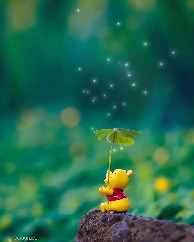 Ignacia Grace on Instagram I wonder how many wishes a star can give pooh edited with DELUXEFX app ignacia grace canon5dmk3 Ignacia Grace on Instagram I wonder how many wi...