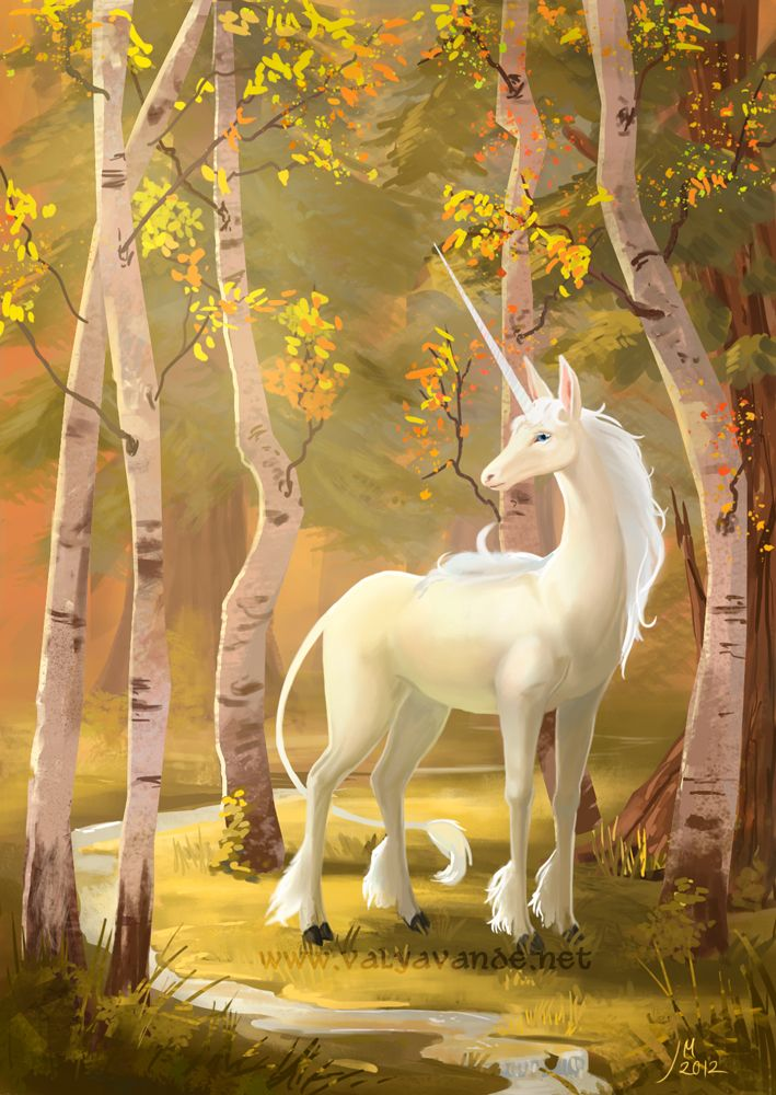 Unicorns And Fairies Real Unicorn by Valy...