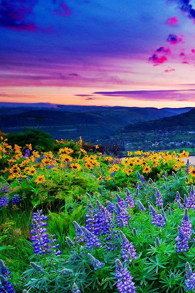 Lush Landscape Wallpaper. landscape spring iphone