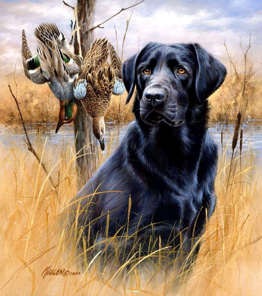 предлагалось картинки для распечатки охота рядом находится