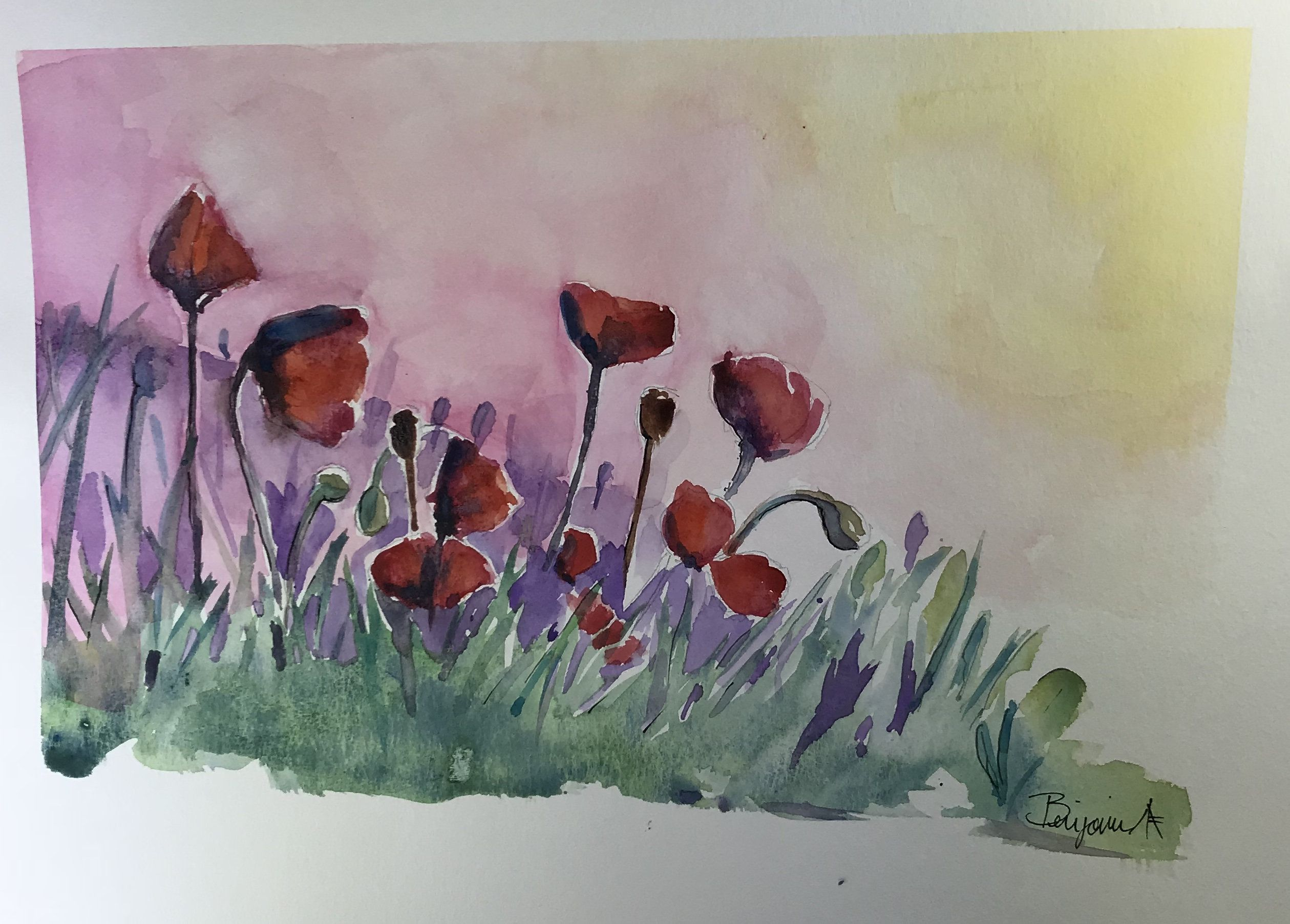 Poppies Wall Art Original Watercolor Painting Watercolour