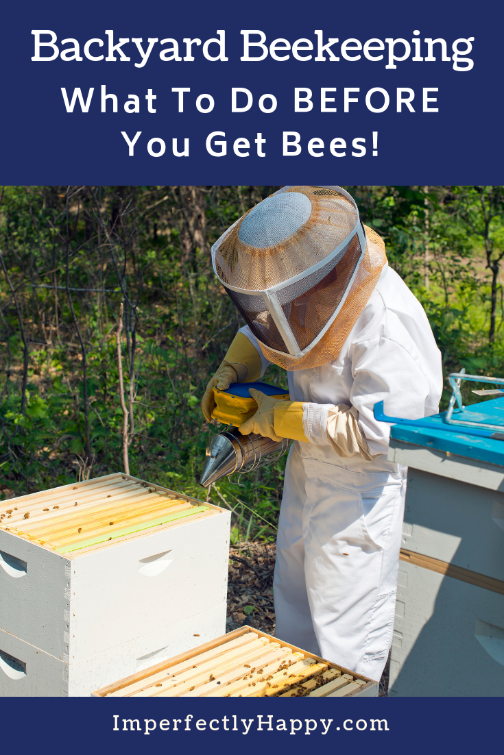 Beekeeping What to Consider Before You Get Bees   Backyard ...