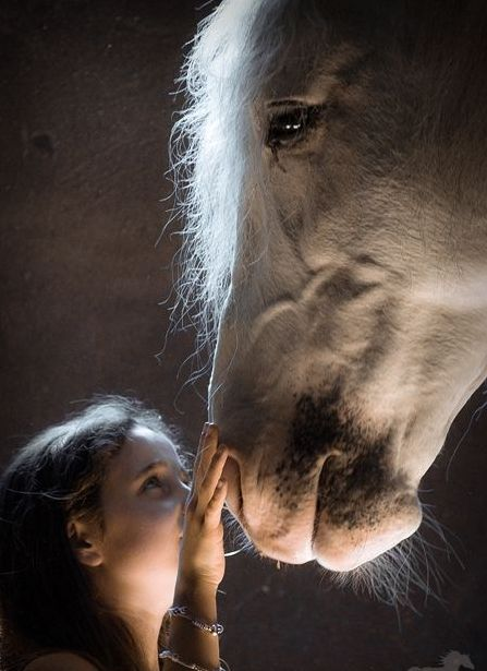 horses with kids - Google Search