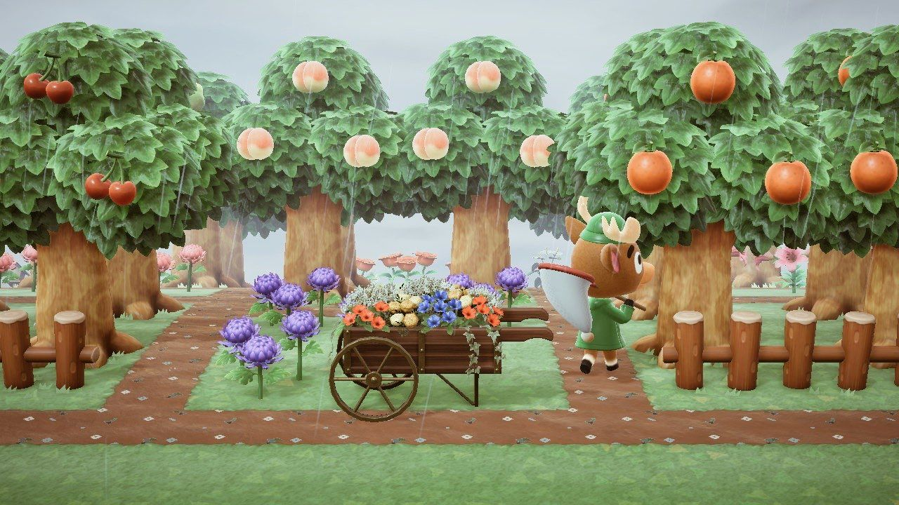 19+ How to plant fruit trees in animal crossing images