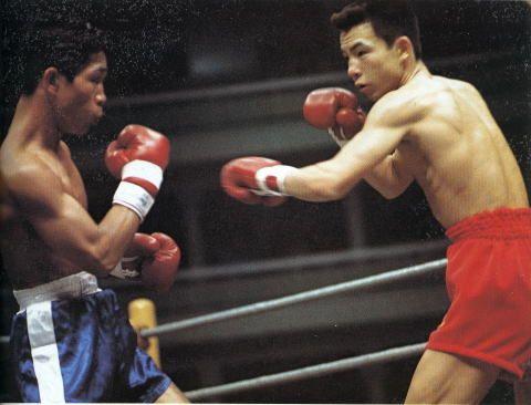 マスター ボクシング ボクシング防御テクニック|ウェービングとスウェービングで無敵に