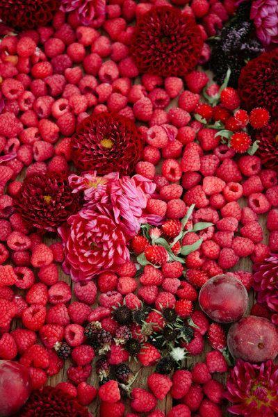 Framboises, fruits rouges, roses >> épinglé par MayoParasol ...