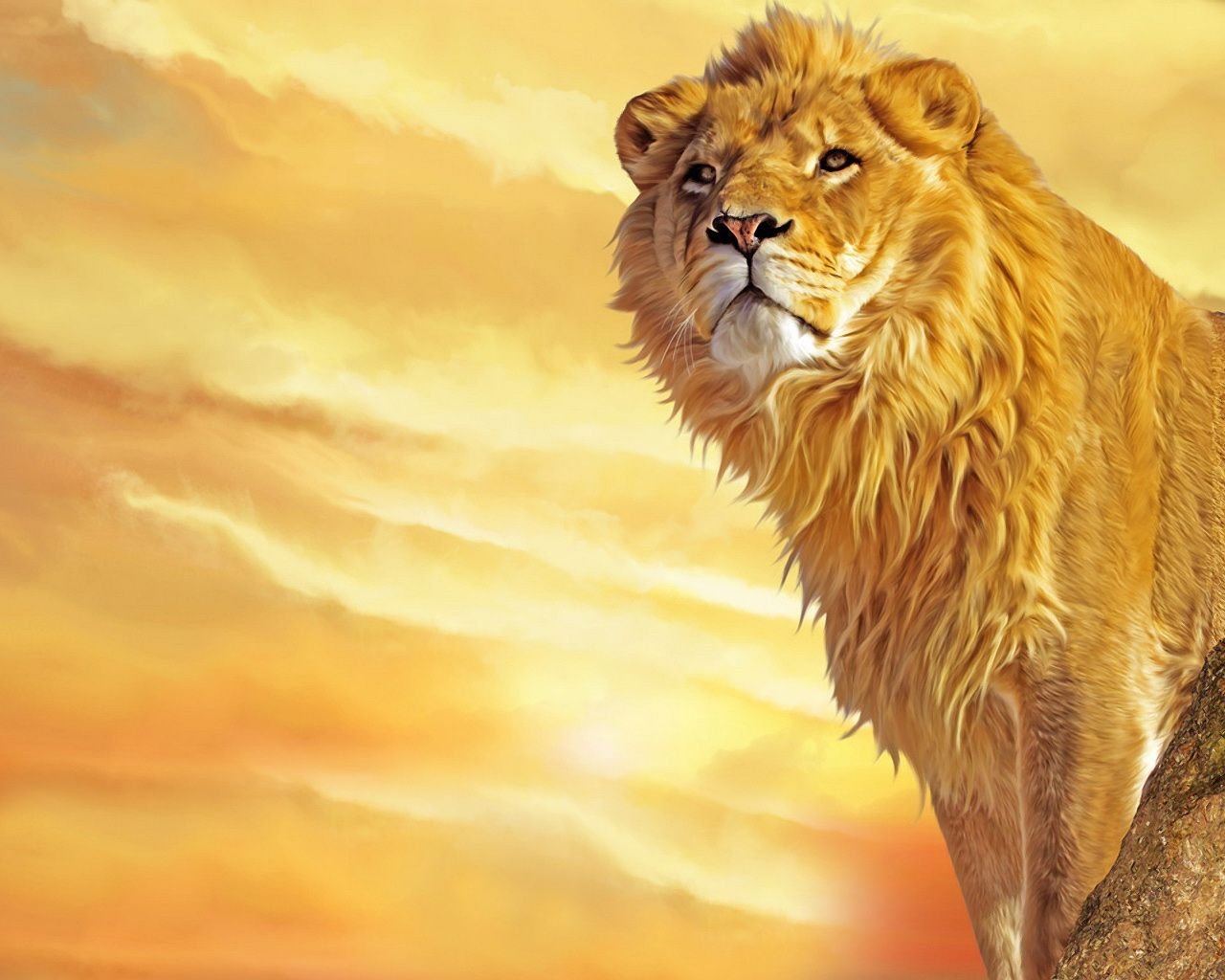 Download Lion Art Wallpaper Free Wallpapers