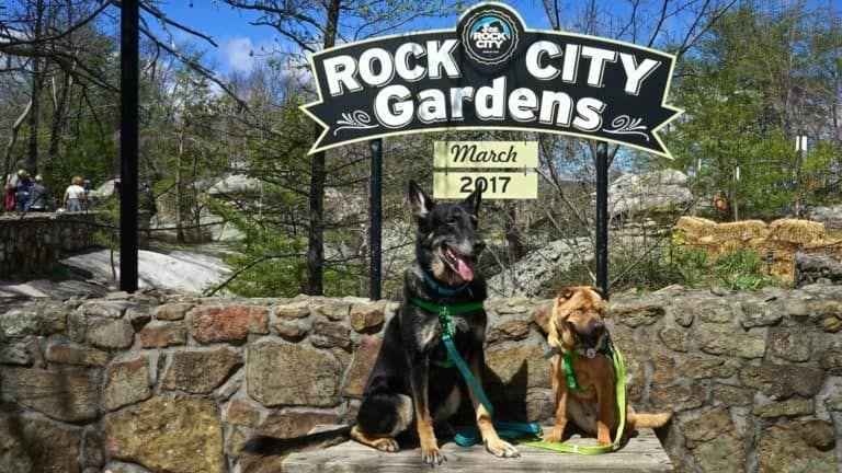 Georgia S Top Pet Friendly Attraction Rock City Gardens Pet Travel Pet Friendly Hotels Dog Travel
