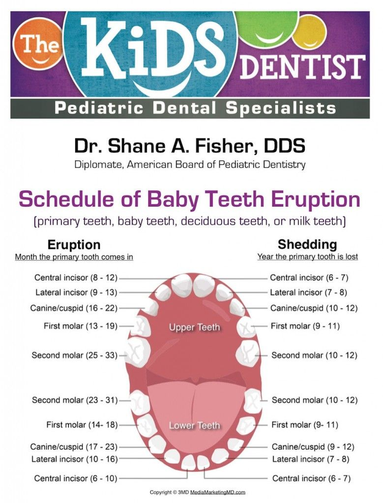 17 best images about Baby Teeth on Pinterest | Baby health ...