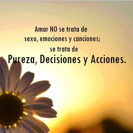 Amor Del Bueno Well Being Pinterest Amor Frases Y Pensamientos