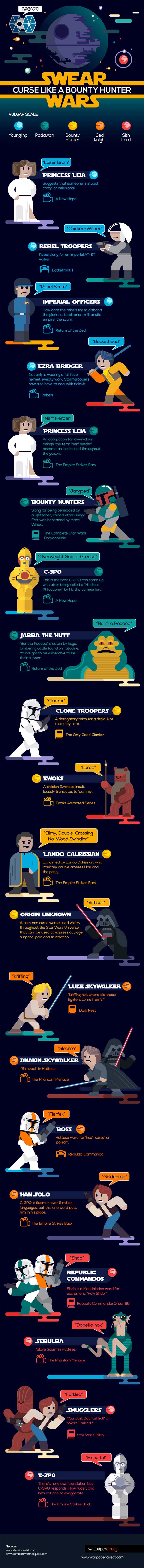 A look at some of the common slang, swear words, and sayings from the Star Wars universe! [Source: Wallpaperdirect.com]