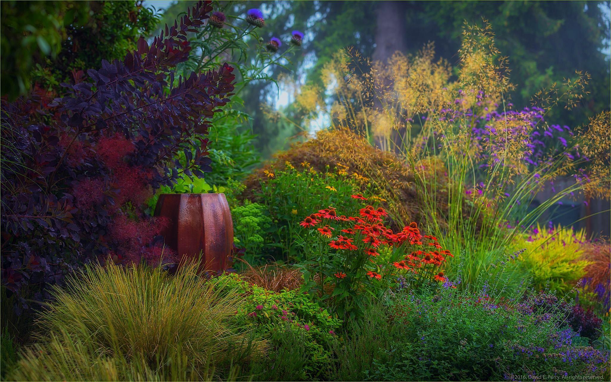 Shrek The Halls Auburn Botanic Gardens