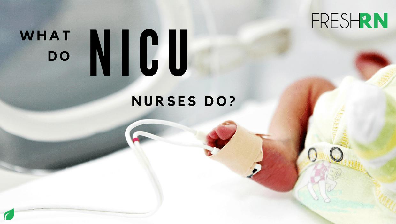 what do nicu nurses do