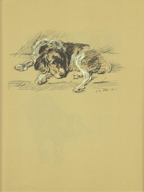 Antique Dog Print, Spaniel Hound Mutt Dog Lucy Dawson, Wall Decor ...