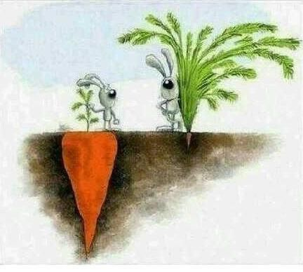 Twitter, Success is not always what you see. pic.twitter.com/evNbvDwFuv