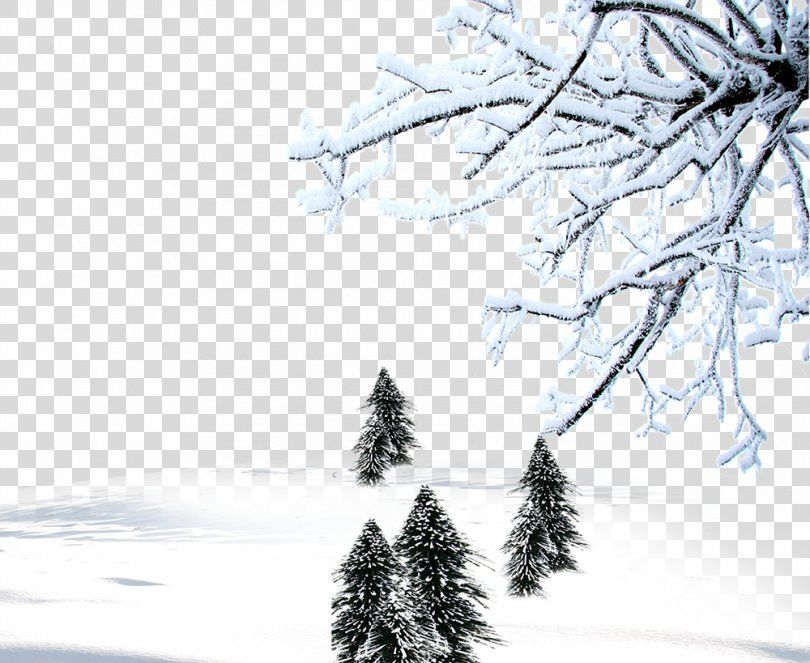 Winter Snow Download Computer File Winter Background Material Png Snow Aspect Ratio Black And White Branch Chri Winter Background Background Winter Snow