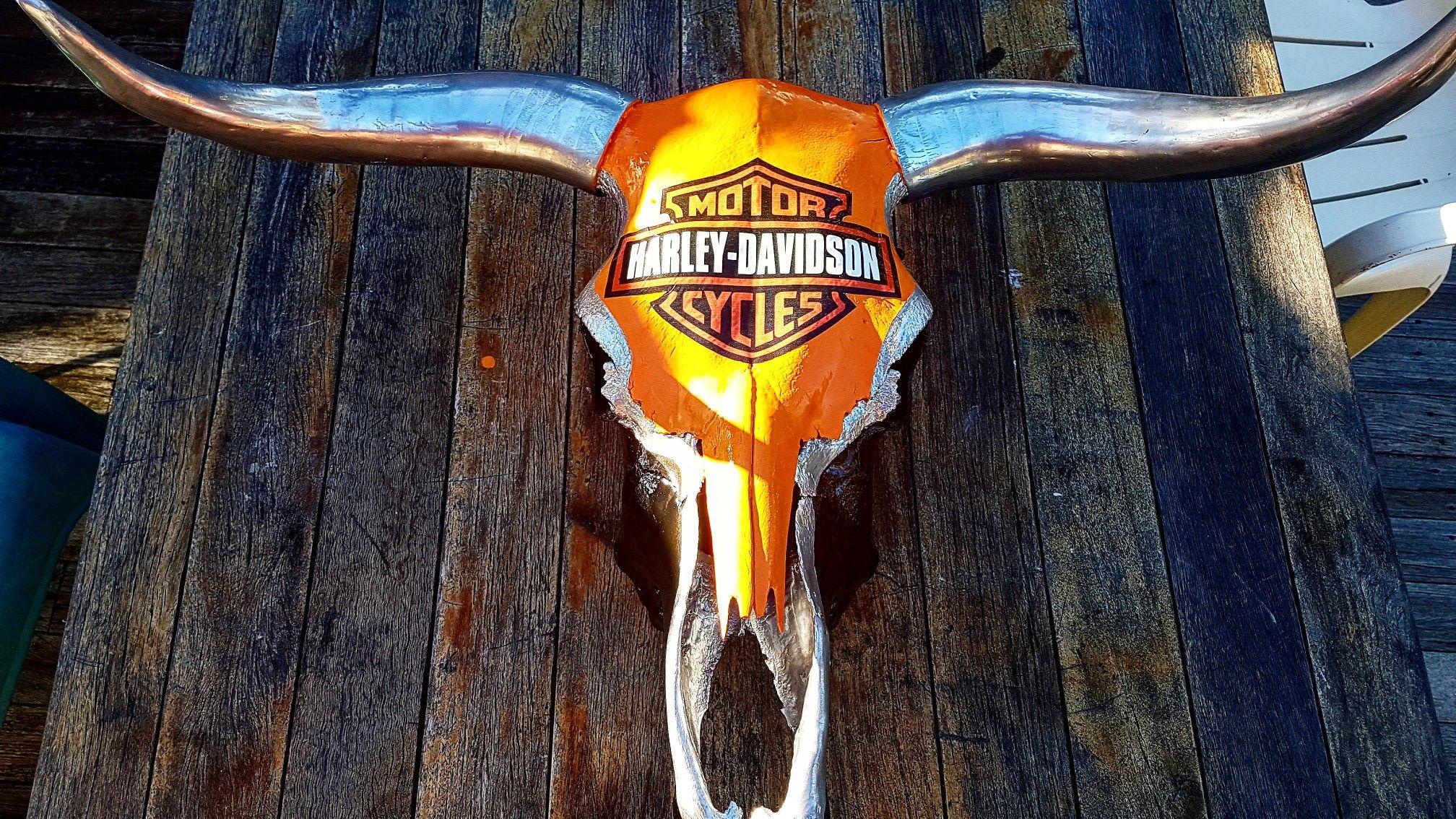 awesome harley davidson bull skull absolutely stunning design rh pinterest com Deer Skull Logo Deer Skull Logo