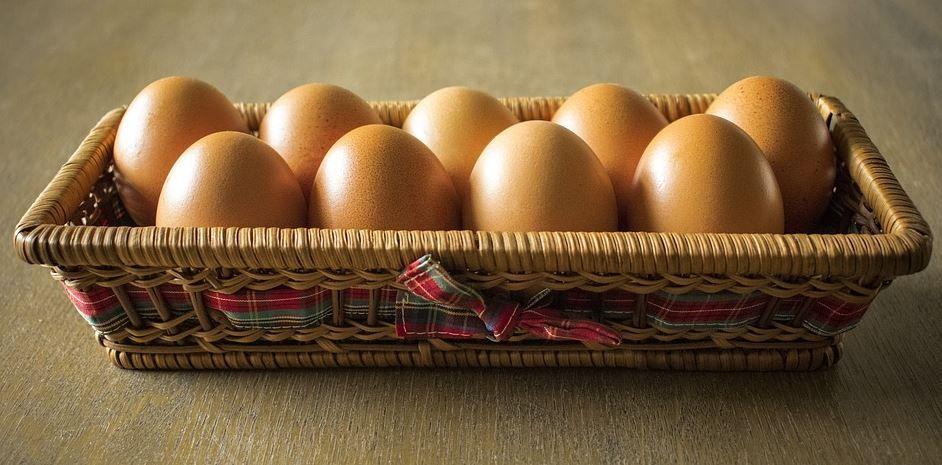E is for eggs food eggs farm eggs