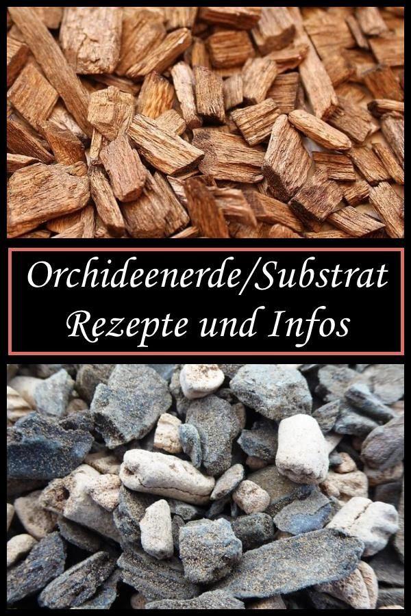 Orchideenerde/-substrat Rezepte und Infos #orchideenpflege