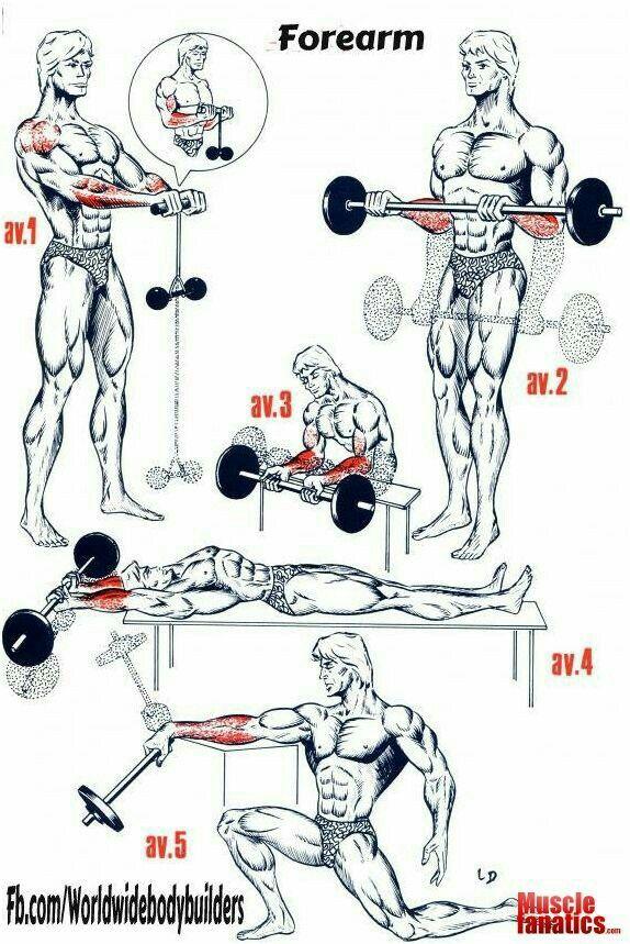 Forearm Excercises.